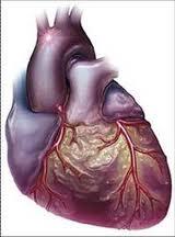 cardiopatía4