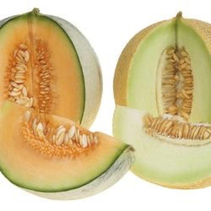 Dieta del melón1