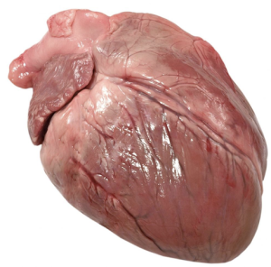 corazón5